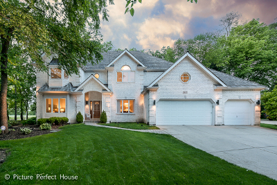 Naperville Single Family Home For Sale: 107 Trappers Court