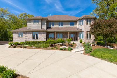New Lenox Single Family Home For Sale: 1151 Edmonds Avenue