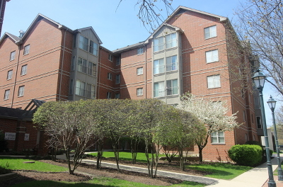 Roselle Condo/Townhouse For Sale: 17 East Hattendorf Avenue #301