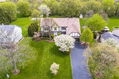 Bartlett Single Family Home For Sale: 711 Fairview Lane
