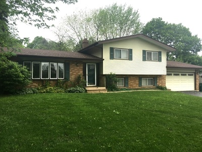 Lombard Single Family Home For Sale: 1808 South Meyers Road