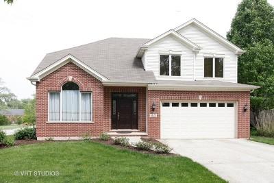 Villa Park Single Family Home For Sale: 1401 South Cornell Avenue