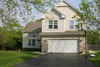 Wicklow Village Single Family Home For Sale: 1127 Pearlman Drive