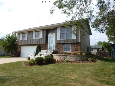 Frankfort Single Family Home Contingent: 8228 West Orchard Drive