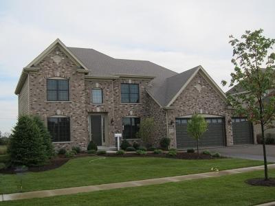 Wheaton Single Family Home For Sale: 1991 Legends Drive