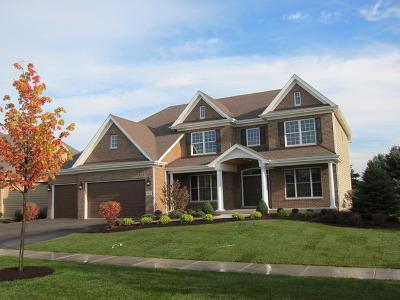 Wheaton Single Family Home For Sale: 1997 Legends Drive