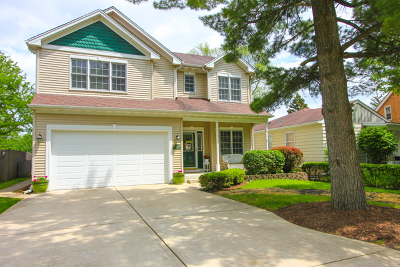 Villa Park Single Family Home For Sale: 707 South Illinois Avenue