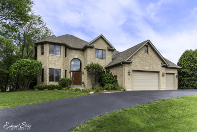Carpentersville Single Family Home For Sale: 3290 Oak Knoll Road