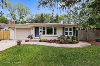 Western Springs Single Family Home For Sale: 3816 Howard Avenue