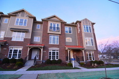 Geneva Condo/Townhouse For Sale: 442 North First Street