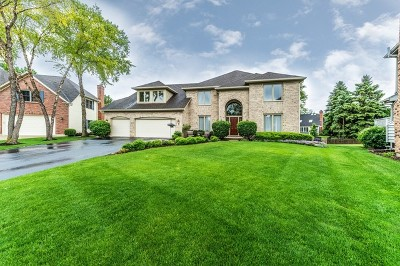 Naperville Single Family Home Contingent: 88 Salt River Court