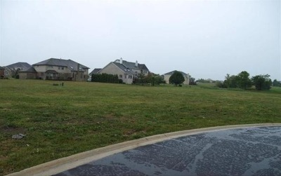 Tinley Park Residential Lots & Land For Sale: 15 Messina Court