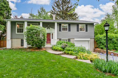 Winfield Single Family Home Contingent: 0n367 Peter Road