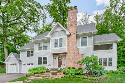 Glen Ellyn Single Family Home For Sale: 651 Lake Road