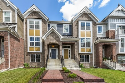Naperville Condo/Townhouse Price Change: 4197 Royal Mews Lot#402 Circle