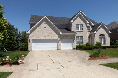 Bloomingdale Single Family Home For Sale: 308 Erie Circle