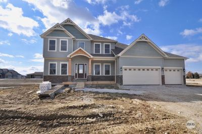 Oswego Single Family Home For Sale: 416 Andover Drive