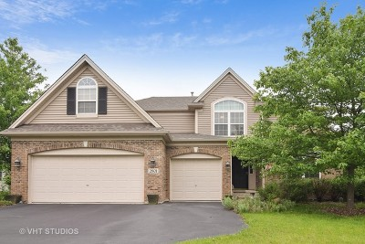 North Aurora Single Family Home For Sale: 2801 Bauer Road