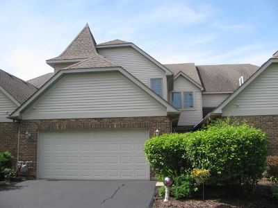 Lemont Condo/Townhouse For Sale: 13928 Steepleview Lane