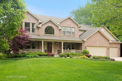 Mount Prospect Single Family Home For Sale: 901 South Edgewood Lane