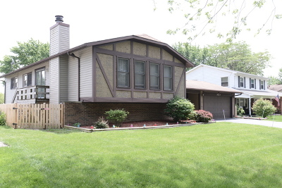 Bolingbrook Single Family Home For Sale: 1024 Londonberry Court