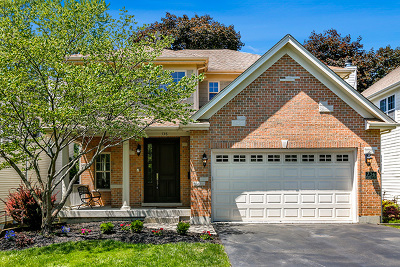 Barrington Single Family Home For Sale: 736 Highland Avenue