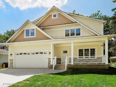 Glen Ellyn Single Family Home For Sale: 76 North Parkside Avenue