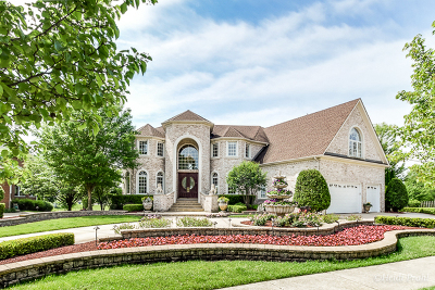 Naperville Single Family Home For Sale: 3916 Callander Court
