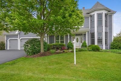 Wheaton Single Family Home For Sale: 44 Marywood Trail