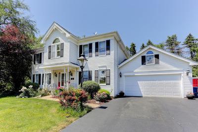 Sleepy Hollow Single Family Home For Sale: 918 Acorn Drive