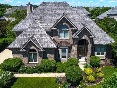 South Elgin Single Family Home Price Change: 31 Persimmon Lane