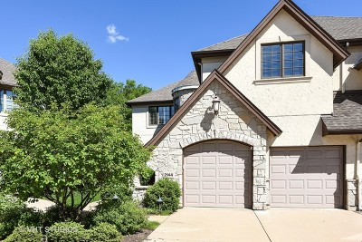 Lisle Condo/Townhouse For Sale: 2144 Lillian Lane