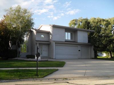 Bolingbrook Single Family Home Contingent: 1384 Comanche Drive