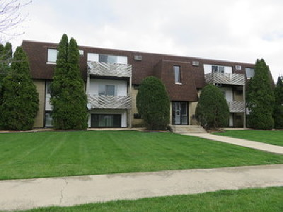 Frankfort Condo/Townhouse Contingent: 20206 South Frankfort Square Road #B