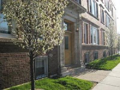 Bronzeville Condo/Townhouse Contingent: 120 East 49th Street #307
