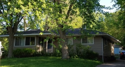 Lisle Single Family Home For Sale: 649 Front Street