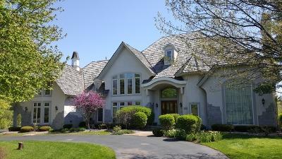 Palos Park Single Family Home For Sale: 12721 South Misty Harbour Lane