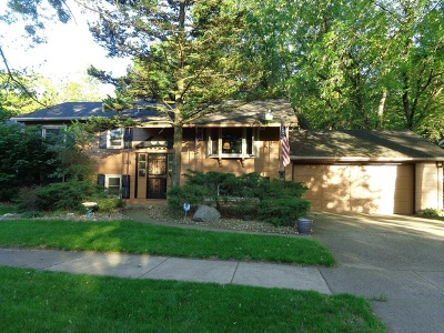 Thornton Single Family Home For Sale: 38 Chippewa Drive