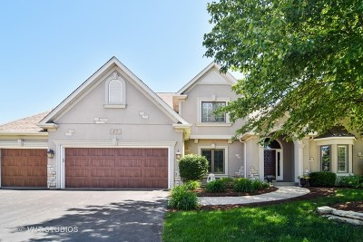 South Elgin Single Family Home For Sale: 17 East Sandstone Court