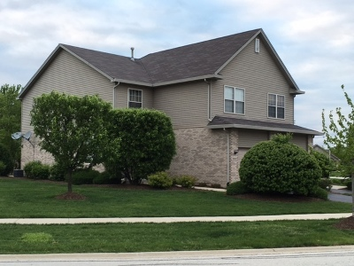 Tinley Park Condo/Townhouse For Sale: 9002 Mansfield Drive