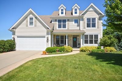 Glen Ellyn Single Family Home For Sale: 829 Avon Court