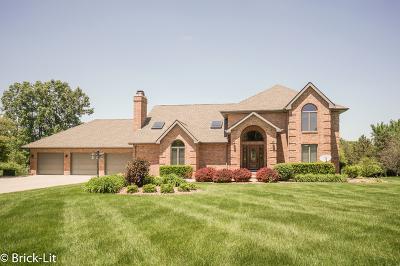 New Lenox Single Family Home For Sale: 2501 Emily Lane