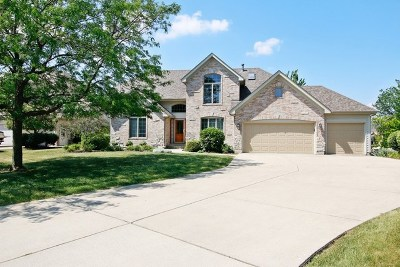 Plainfield Single Family Home For Sale: 13122 Wood Duck Drive