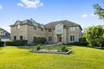 Burr Ridge Single Family Home For Sale: 6836 Fieldstone Drive