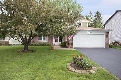 Carol Stream Single Family Home Contingent: 1226 Spring Valley Drive