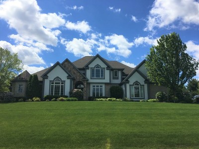 Antioch Single Family Home Contingent: 596 Birch Hollow Drive