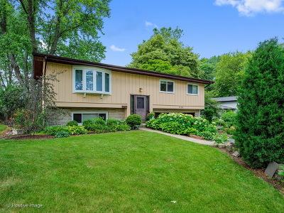 Lisle Single Family Home For Sale: 5518 Primrose Avenue