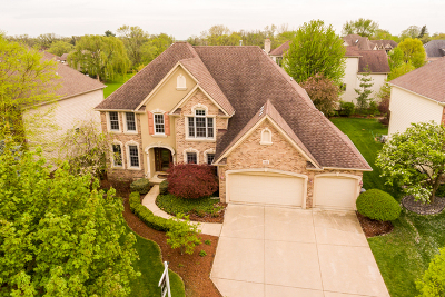 Glen Ellyn Single Family Home For Sale: 911 Sheehan Avenue