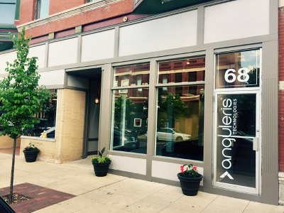 Elgin Commercial For Sale: 70 South Grove Avenue