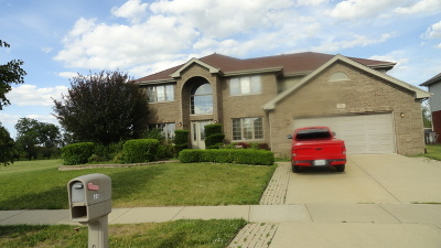 Matteson Single Family Home For Sale: 231 Homeland Road